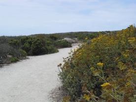 Moss Landing hiking trail