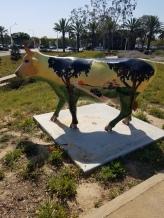 Highway 101 Cow