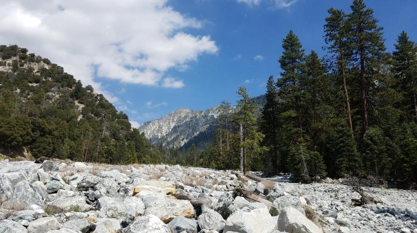 Mill Creek riverbed