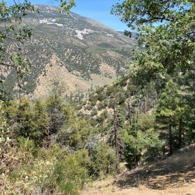Vista View Rio Monte Trail